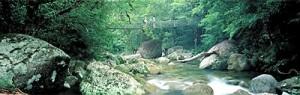 p_mossman-gorge